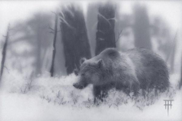 """""""Grizzly"""" original fine art by Terri Heinrichs"""