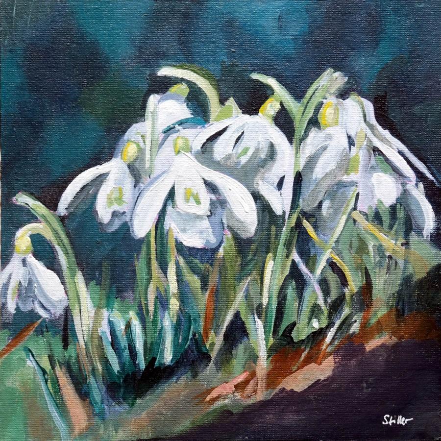 """""""2760 Snowdrops 2"""" original fine art by Dietmar Stiller"""