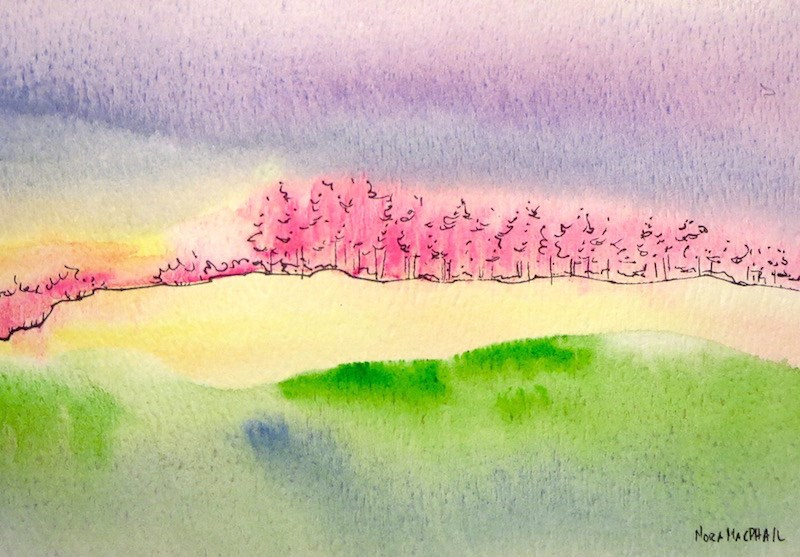 """""""pink trees"""" original fine art by Nora MacPhail"""