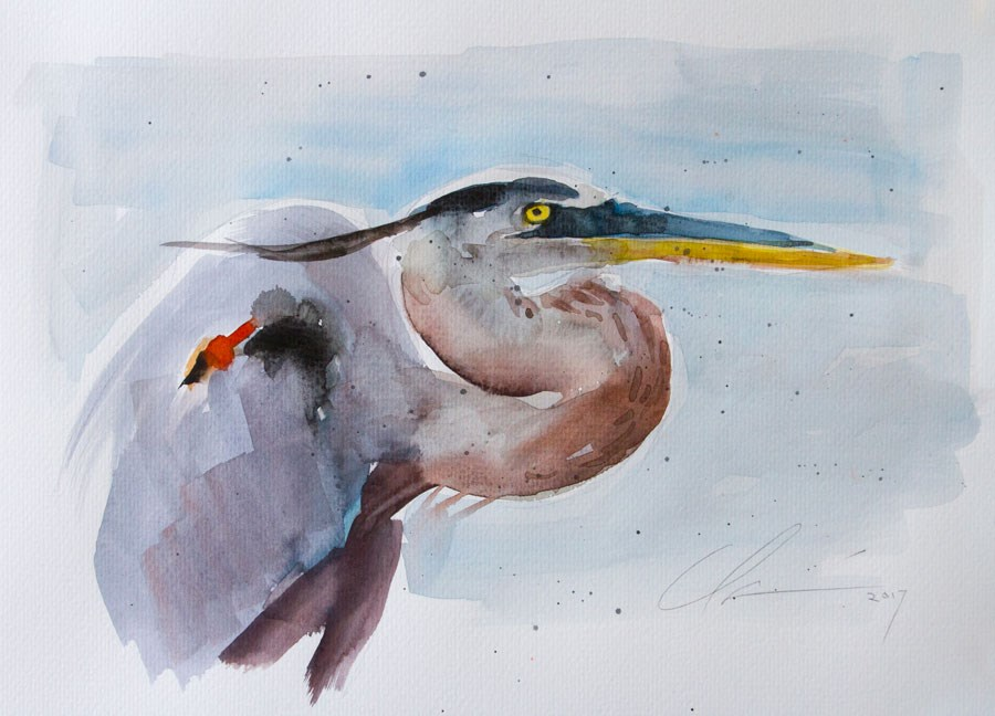 """Blue Heron Watercolor"" original fine art by Clair Hartmann"