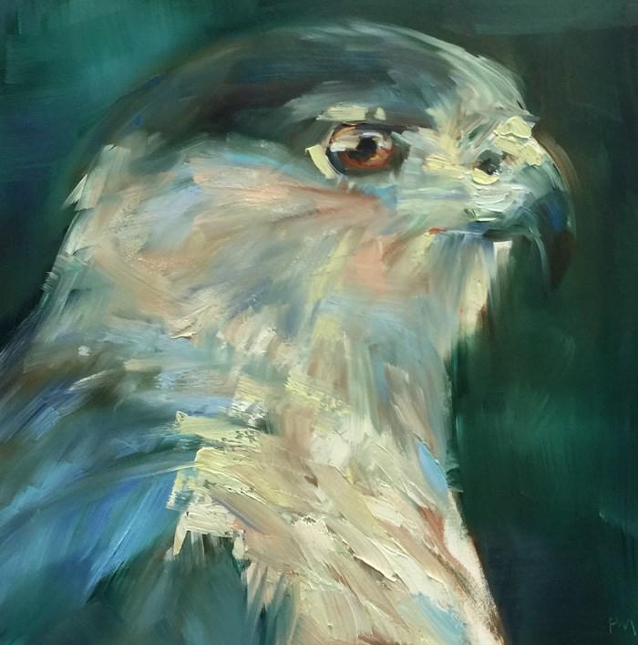 """""""I'm a Cooper's Hawk!"""" original fine art by Patti McNutt"""