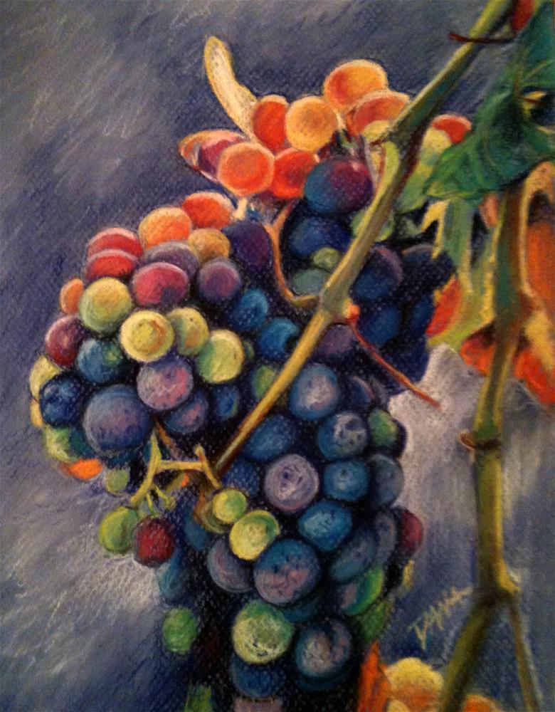 """Grapes in Sunlight"" original fine art by Dana Lombardo"