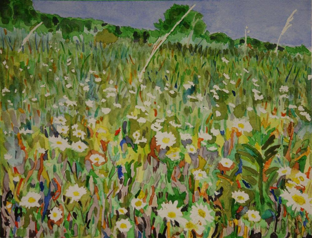 """Field of Daisies"" original fine art by Terri-Anne Barge"