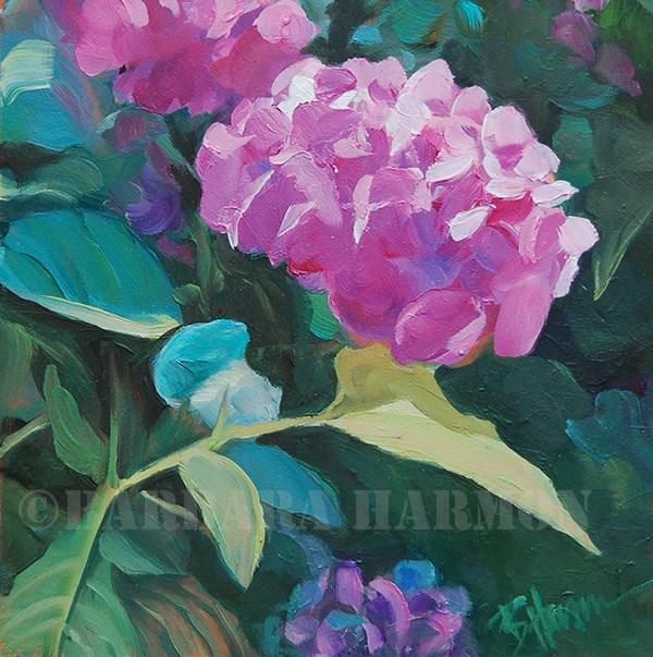 """""""Back Door Hydrangea"""" original fine art by Barbara Harmon"""