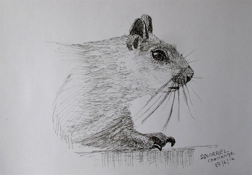"""""""The Squirrel Challenge"""" original fine art by Steinunn Einarsdottir"""