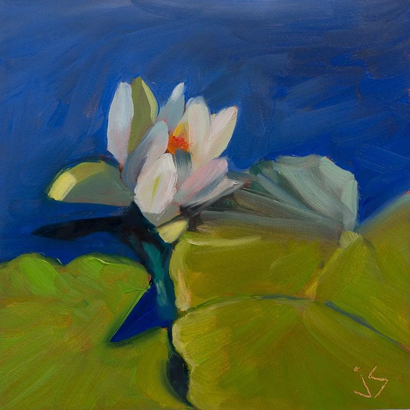 """Little Beauty"" original fine art by Johnna Schelling"