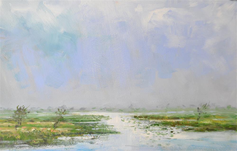 """""""Noord-Holland Zaanse schans"""" original fine art by Wim Van De Wege"""
