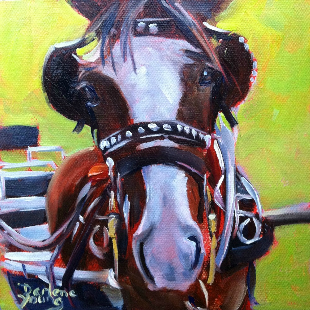 """""""Clydesdale Horse, oil, 6x6"""" original fine art by Darlene Young"""