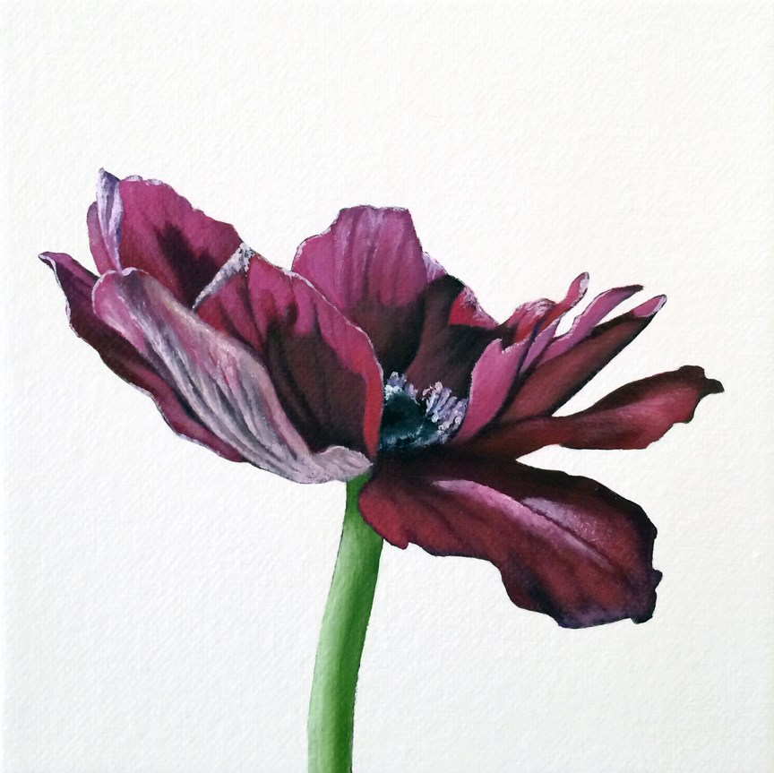 """Anemone IV"" original fine art by Jelaine Faunce"
