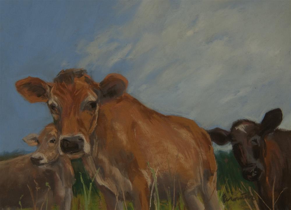 """Curious Cows"" original fine art by Sarah Peroutka"