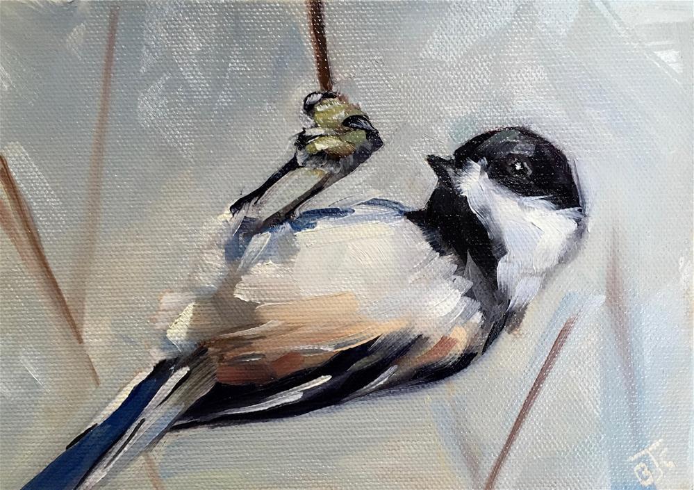 """""""Acrobatic Chickadee"""" original fine art by Bobbie Cook"""