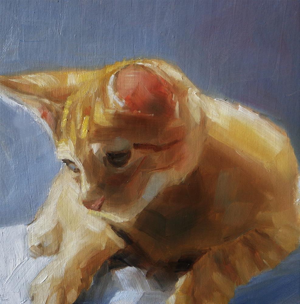 """Tabby cat"" original fine art by Maria Z."