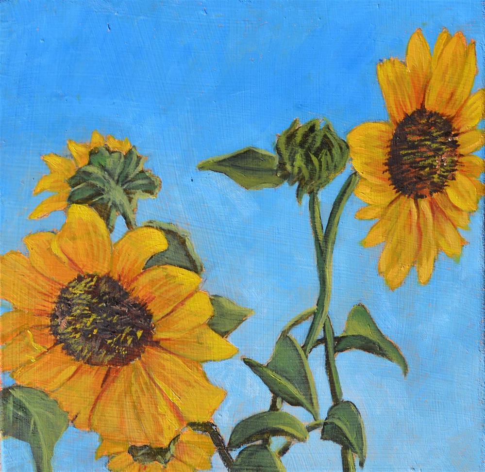 """Sunflowers"" original fine art by Robert Frankis"