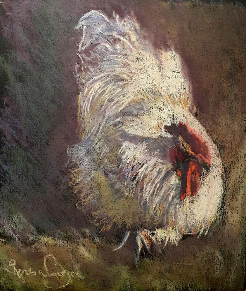 """Elvis the Orpington"" original fine art by Rentia Coetzee"