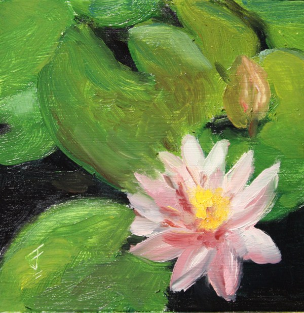 """Lily Bloom"" original fine art by Jane Frederick"
