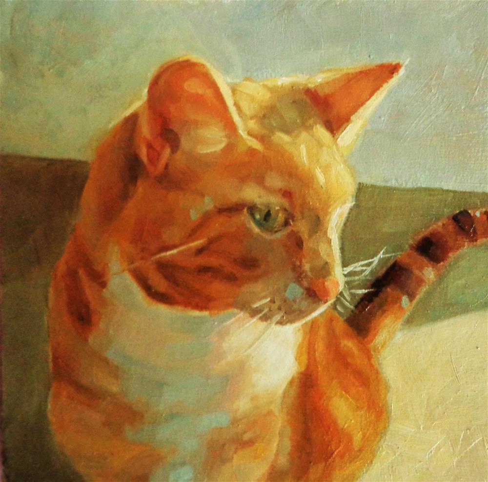 """""""Orange cat"""" original fine art by Maria Z."""