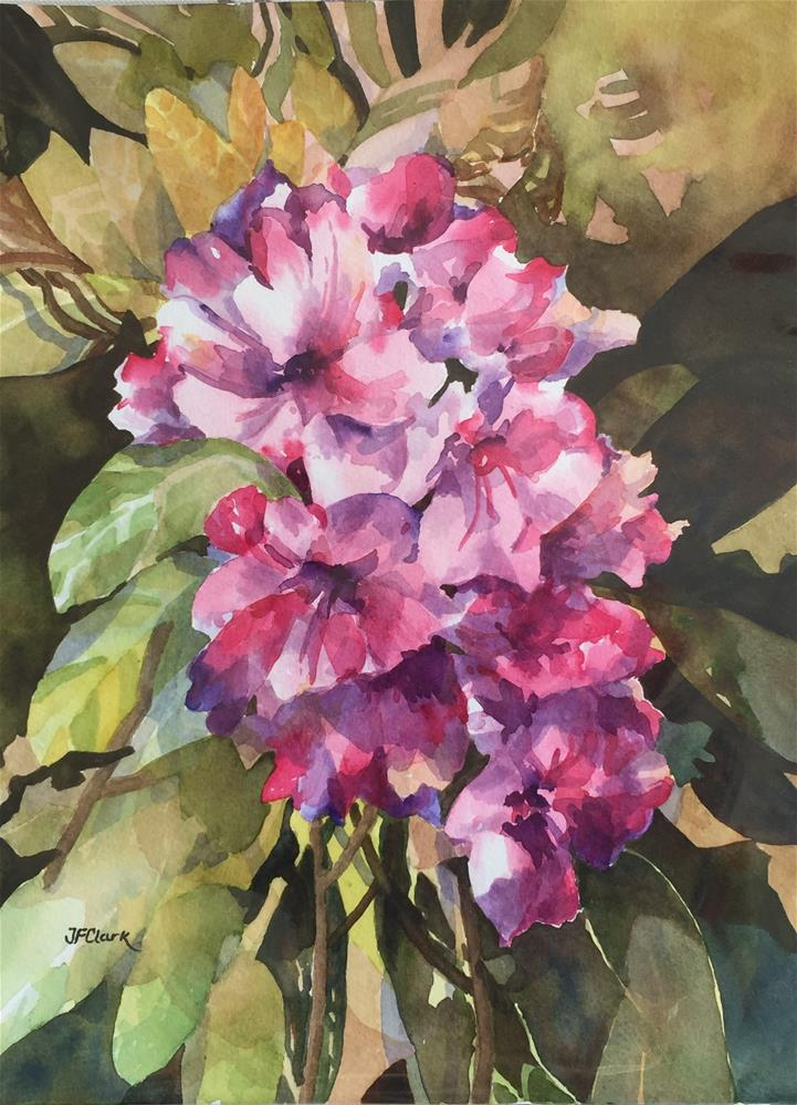 """Rhododendron Shadows"" original fine art by Judith Freeman Clark"