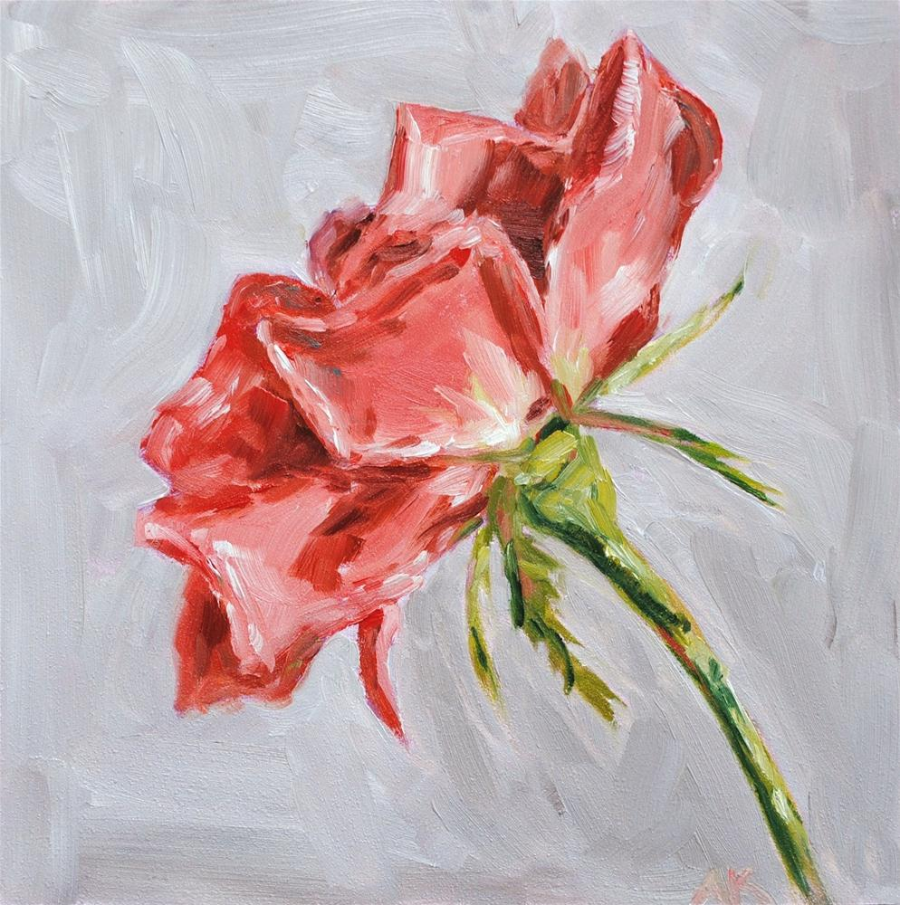 """The Rose"" original fine art by Alison Kolkebeck"