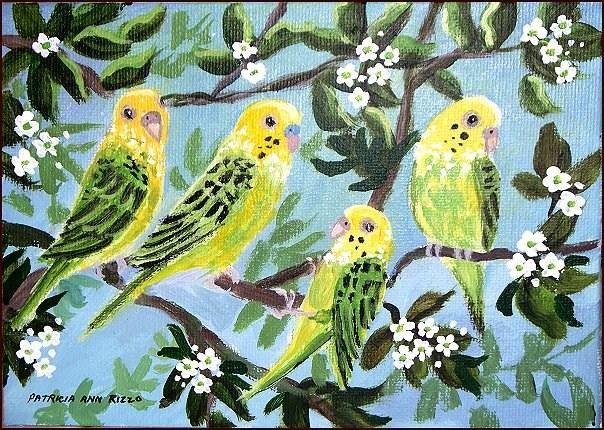 """Wild Florida Parakeets"" original fine art by Patricia Ann Rizzo"