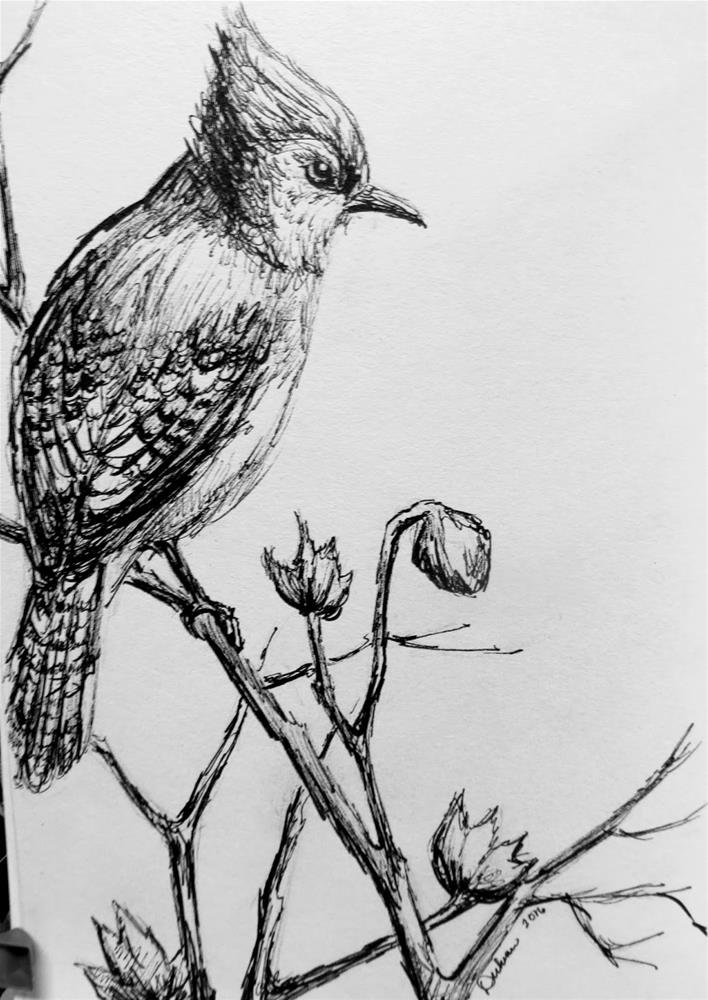 """Blue Jay in Ink"" original fine art by Tammie Dickerson"