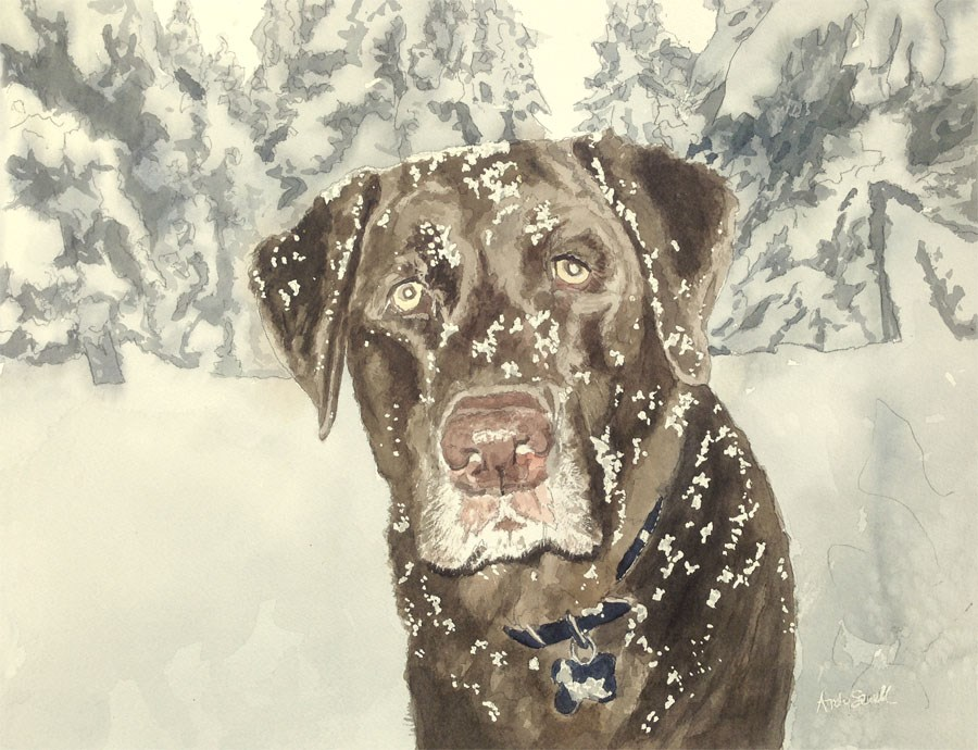 """""""Snow Dog"""" original fine art by Andy Sewell"""