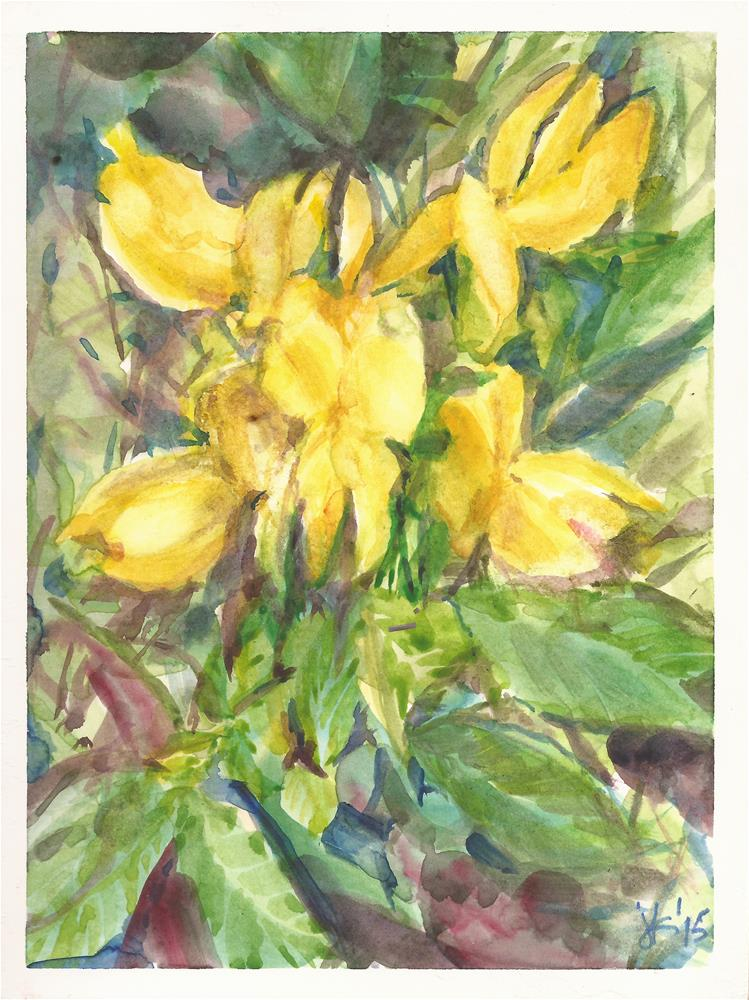 """Golden Banner Thermoses divaricarpa"" original fine art by Jean Krueger"
