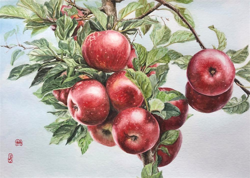 """""""Apples in the tree"""" original fine art by Nan Ma"""