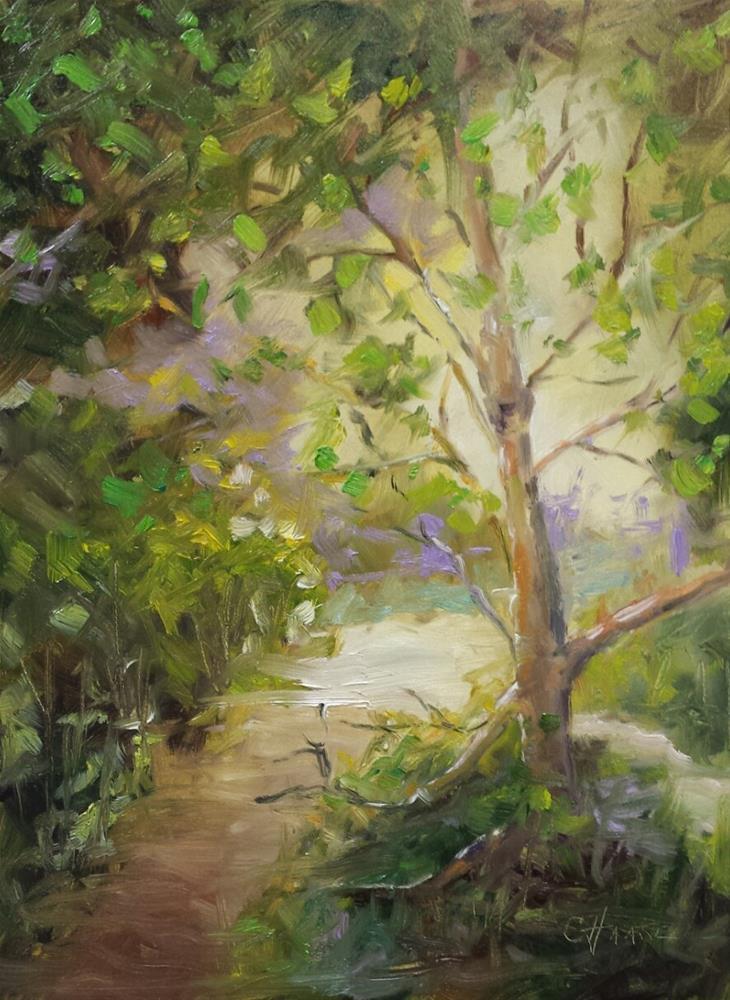 """Pathway"" original fine art by Cindy Haase"