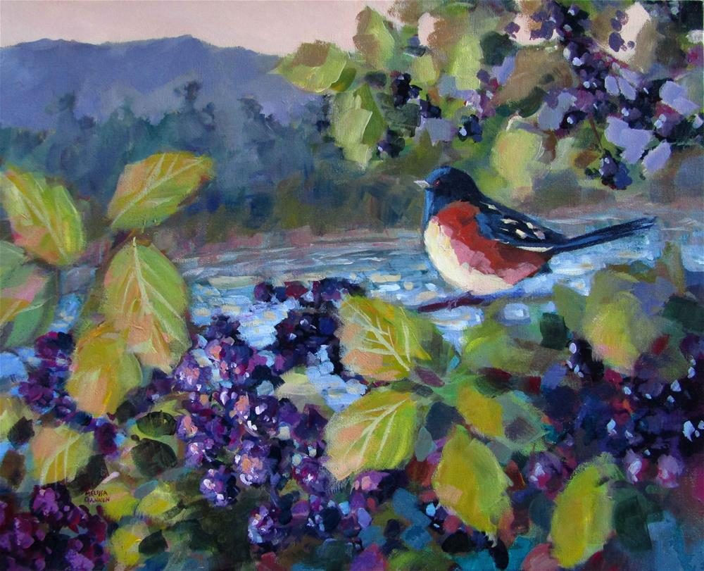 """Towhee & Blackberries"" original fine art by Melissa Gannon"