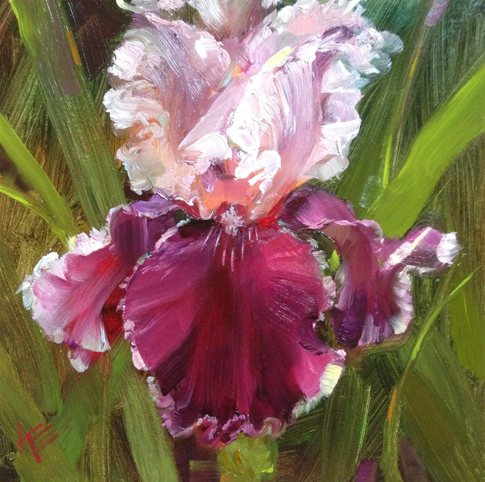 """~Latin Lover - Tall bearded iris~"" original fine art by Krista Eaton"