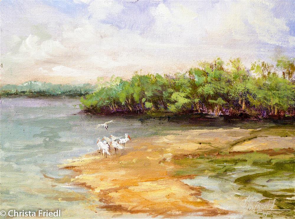 """""""Ding Darling Wildlife Refuge"""" original fine art by Christa Friedl"""