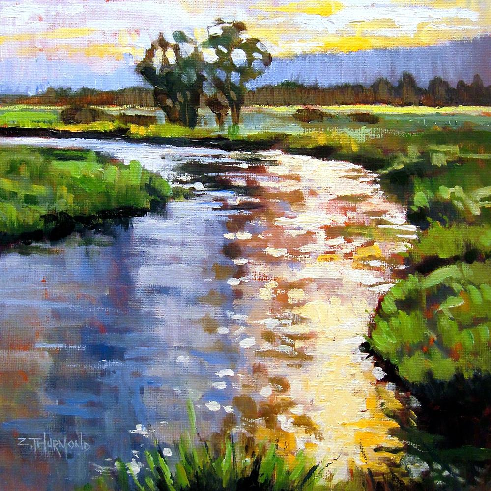 """Tomichi Creek Tones"" original fine art by Zack Thurmond"