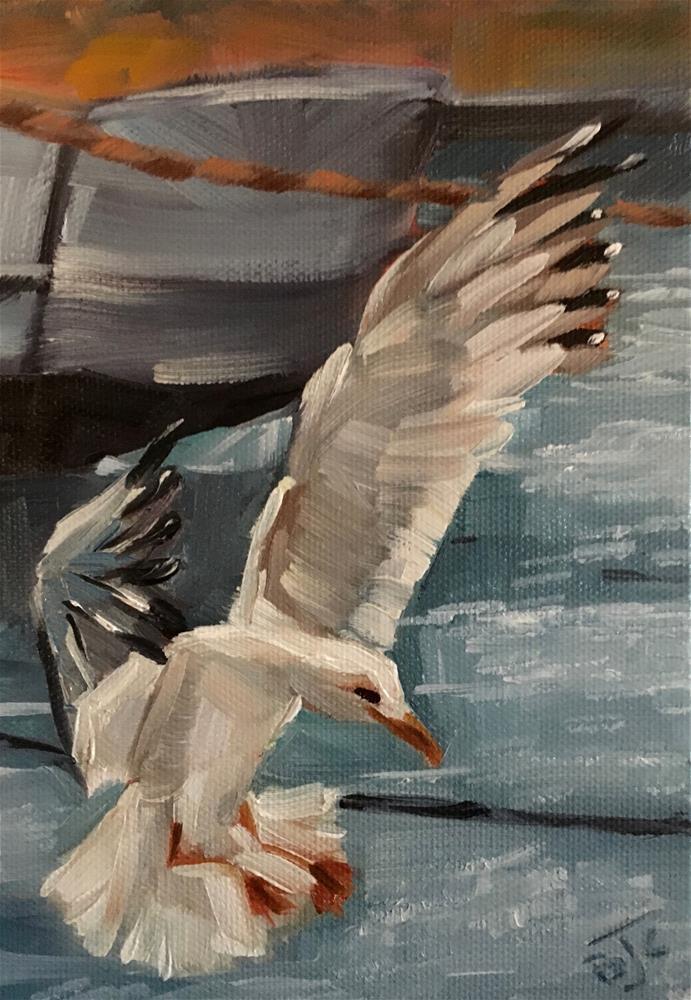 """Graceful Landing"" original fine art by Bobbie Cook"
