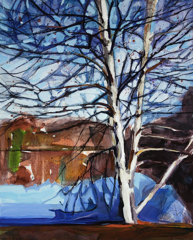 """Birch Tree"" original fine art by Chris Breier"