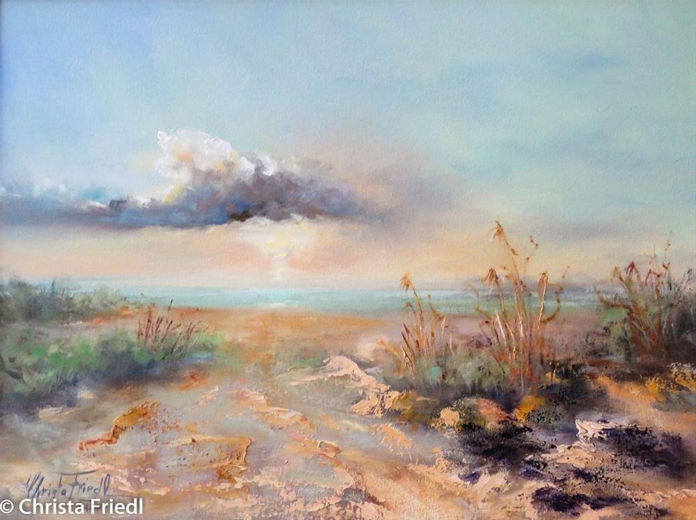 """Sunset Bowditch Park, Fort Myers"" original fine art by Christa Friedl"