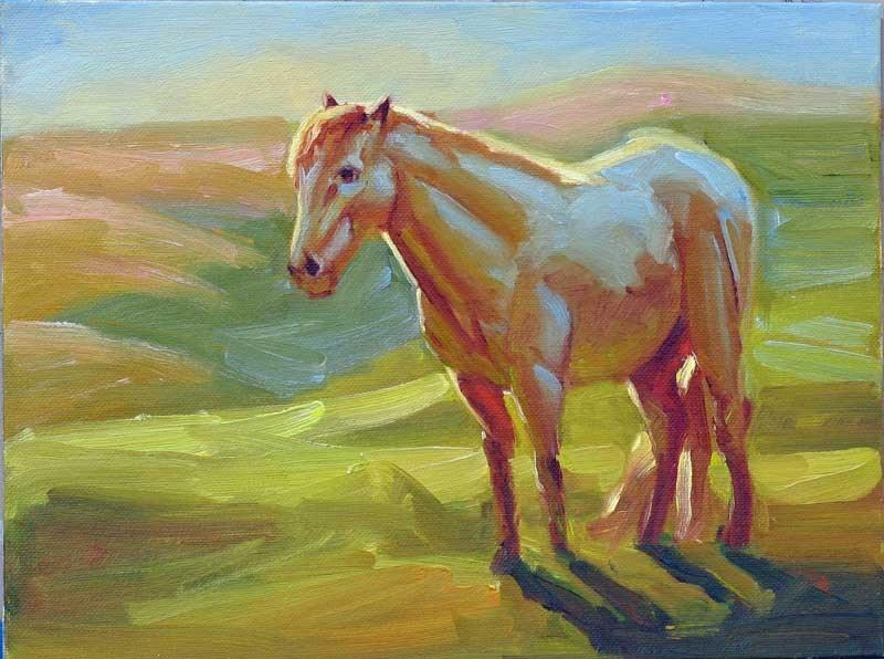 """White Horse at Dawn"" original fine art by Mary Mulvihill"