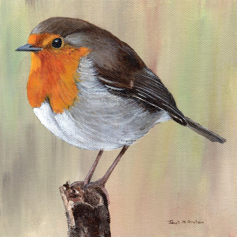 """Robin"" original fine art by Janet Graham"