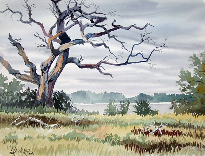 """Live Oak, Deer Island"" original fine art by Jeff Atnip"