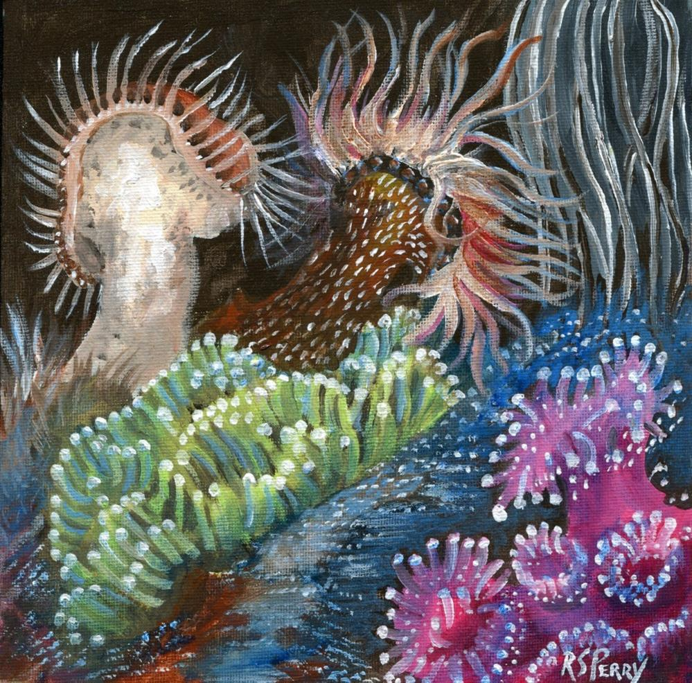 """Jewel Sea Anemones with snakelocks, & Bubble Sea A"" original fine art by R. S. Perry"
