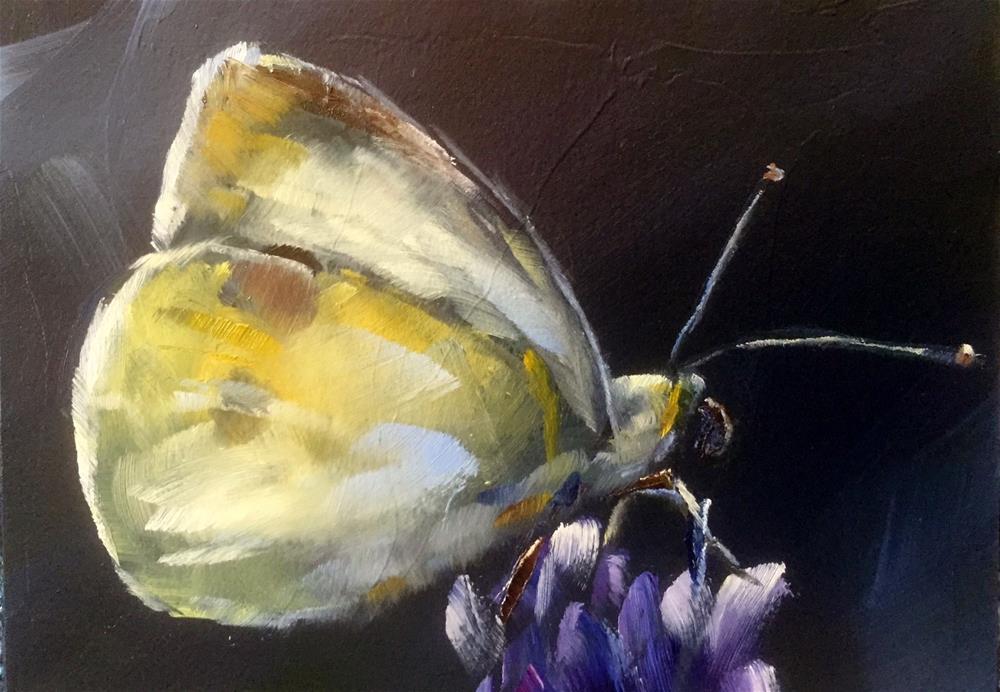"""Butter Colored Butterfly"" original fine art by Gary Bruton"