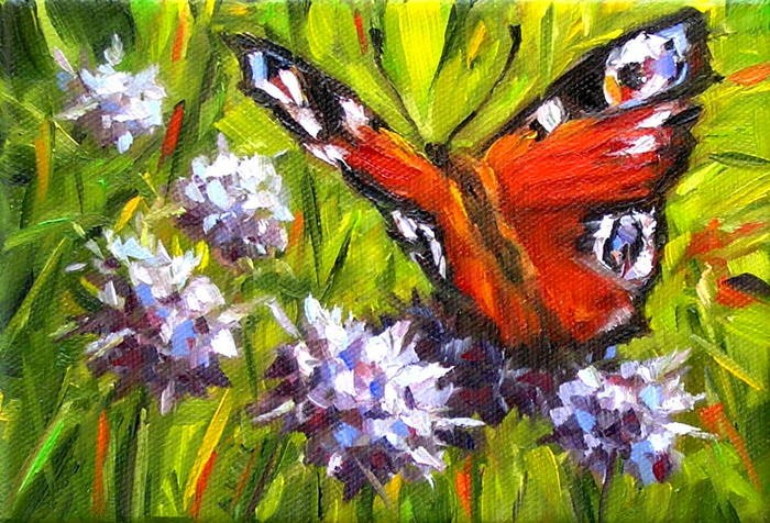 """Peacock Butterfly"" original fine art by Irina Beskina"