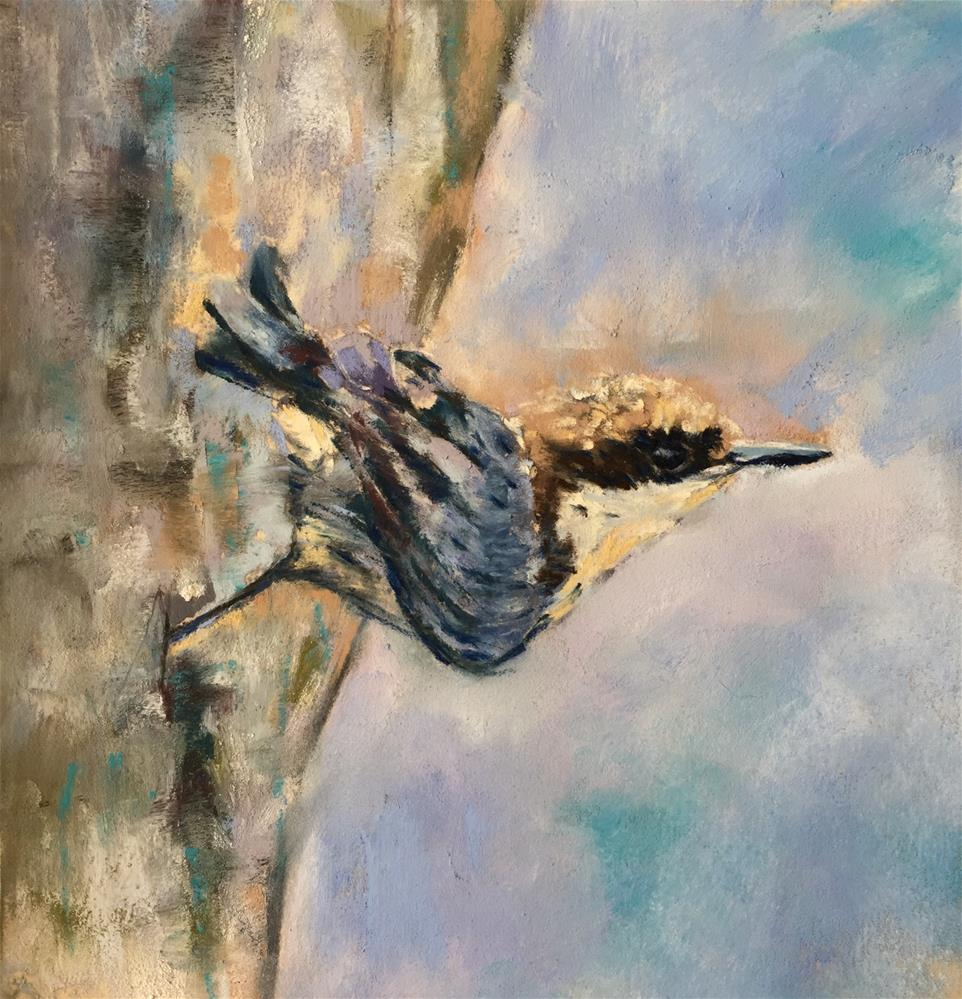 """Nuthatch"" original fine art by Donna Theresa"