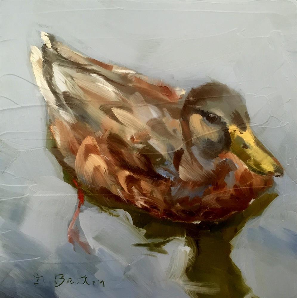 """Duck Paddling"" original fine art by Gary Bruton"