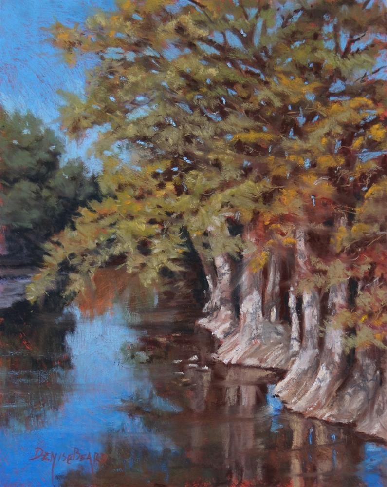 """Guadalupe Cypress"" original fine art by Denise Beard"