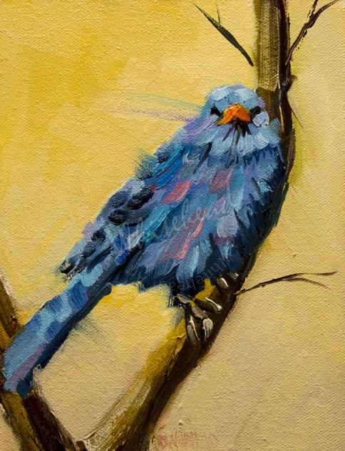 """ARTOUTWEST Song BIRD ART BY Diane Whitehead"" original fine art by Diane Whitehead"