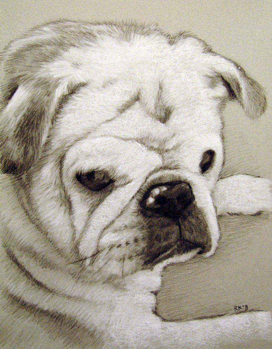 """A Pet Portrait"" original fine art by Rita Kirkman"