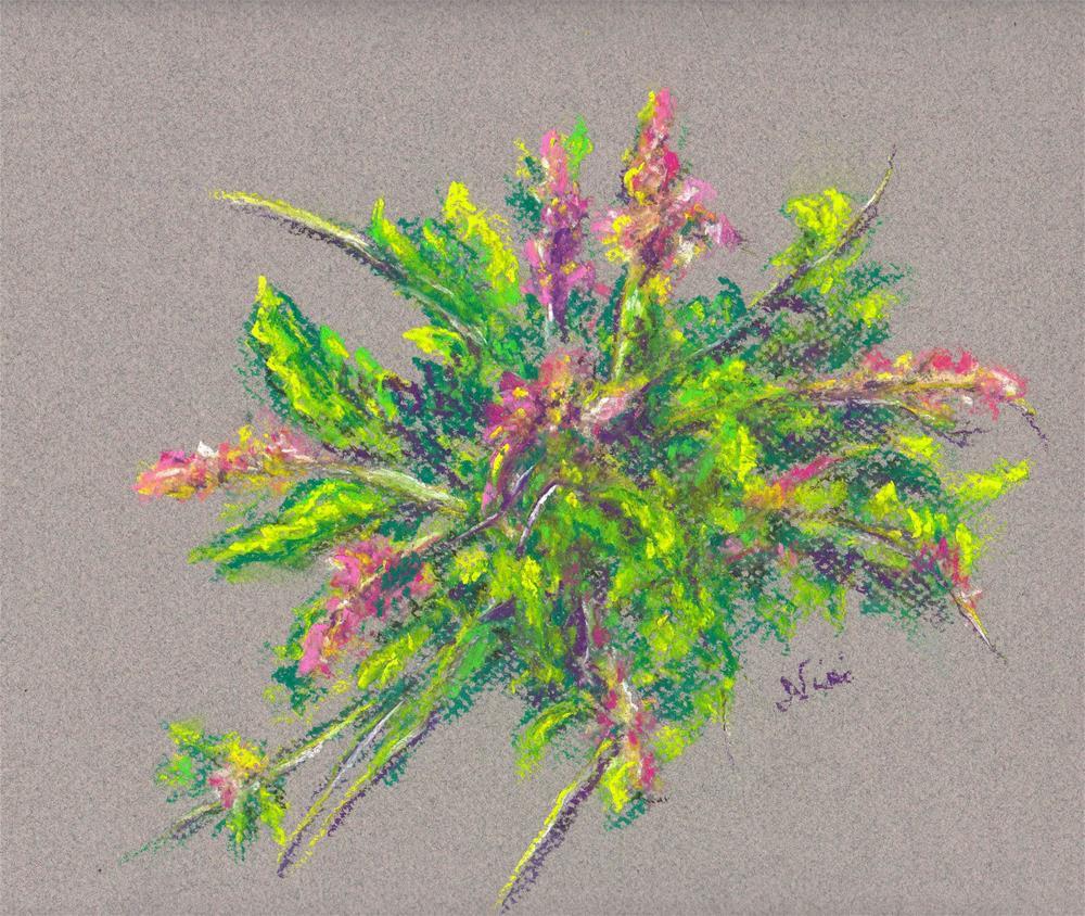 """""""Sprig"""" original fine art by Niki Hilsabeck"""