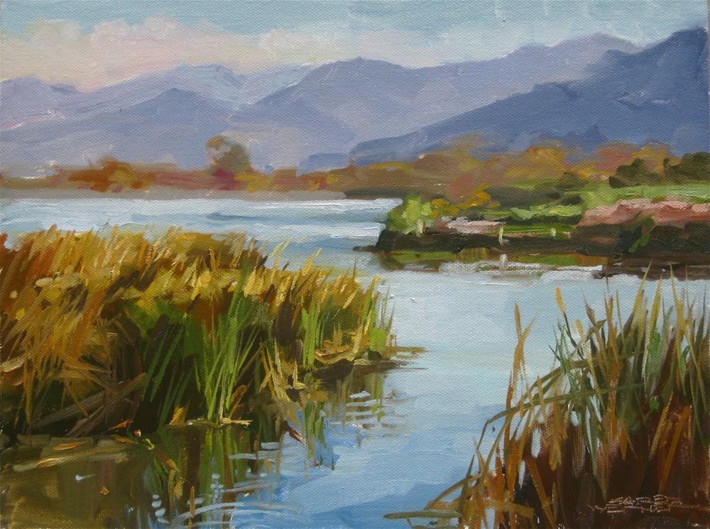"""""""Prado Pond, Winter"""" original fine art by Karen Werner"""