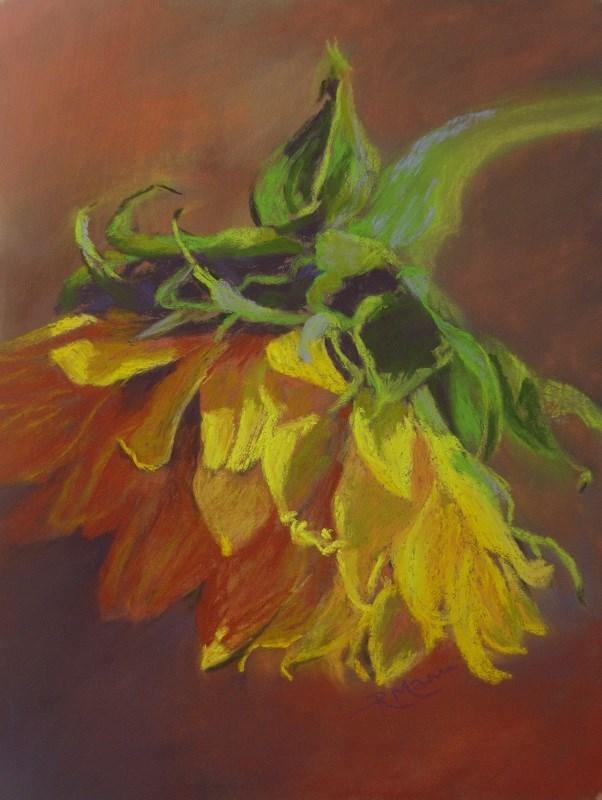 """""""Sunflower"""" original fine art by Ruth Mann"""