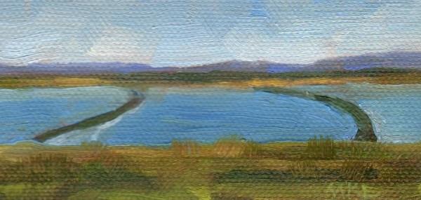 """""""Yolo Causeway Rice Fields"""" original fine art by Marlene Lee"""
